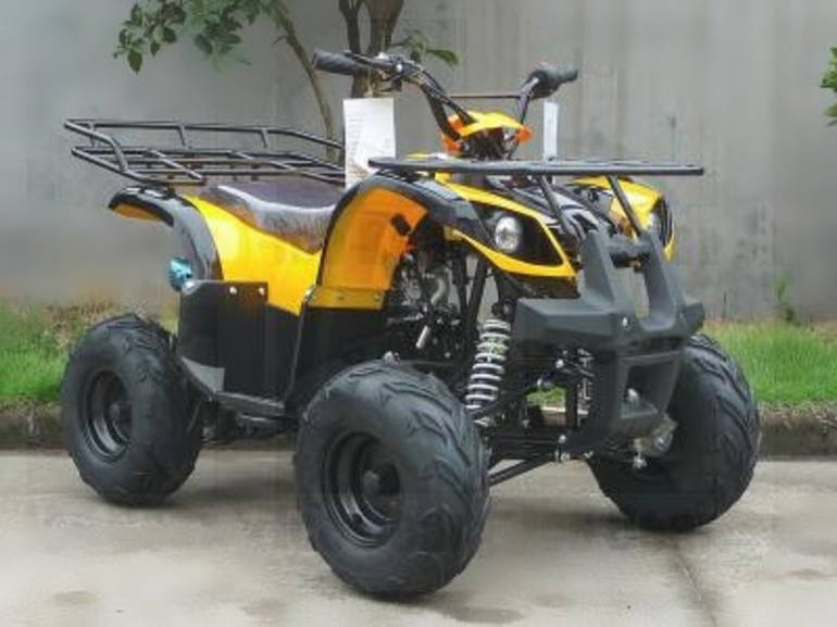 See more photos for this Ice Bear 125cc Adventure-SE ATV FOR SALE, 2012 motorcycle listing