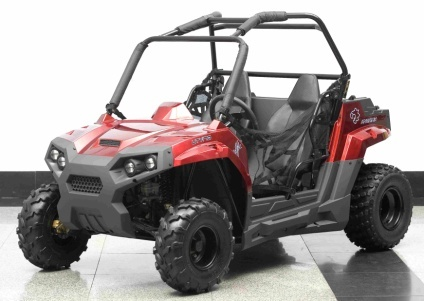 2014 Ice Bear 150cc Lightning UTV, motorcycle listing